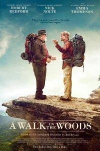 Прогулянка по лісах (2015)