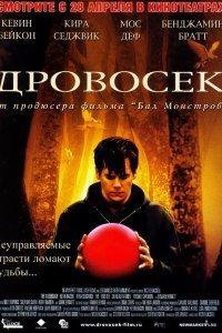 Дроворуб (2004)