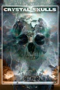Кришталеві черепи (2014)