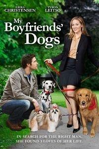 Собаки моїх колишніх (2014)