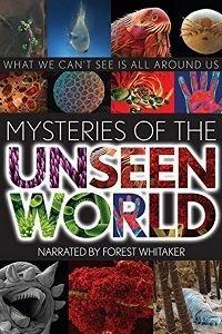 Таємниці невидимого світу (2013)