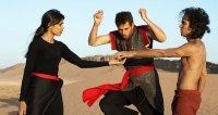 Танцюючий в пустелі (2016)