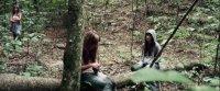 Дівчина в лісі (2016)