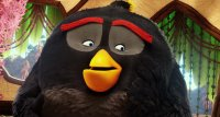 Angry Birds в кіно (2016)