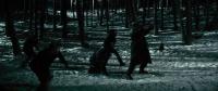 Багряна зима (2013)