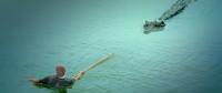Крокодил на мільйон доларів (2012)