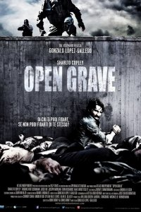 Відкрита могила (2013)