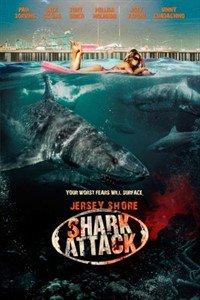 Напад акул на Нью-Джерсі (2012)