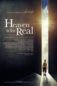 Небеса реальні (2014)