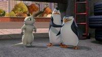 Пінгвіни Мадагаскару (2 сезон)