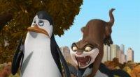 Пінгвіни Мадагаскару (3 сезон)