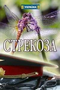 Стрекоза / Бабка (2018)
